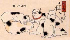 ○●白黒猫 黒白猫 7匹目●○ [転載禁止]©2ch.net YouTube動画>1本 ->画像>585枚